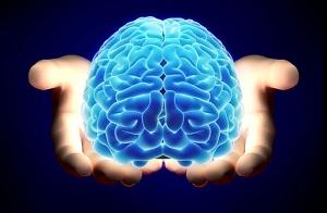 8-coisas-que-nc3b3s-simplesmente-nc3a3o-entendemos-sobre-o-cc3a9rebro-humano