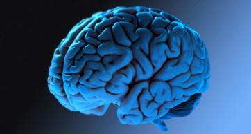 cerebro-facebook