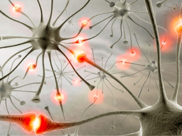 Synapse-Neurons-Wallpaper