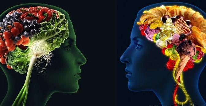 Vitaminas que podem ajudar MUITO seu cérebro